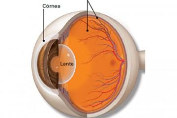 Cirugía LASIK, Centro oftalmológico Luis Sócola Vela